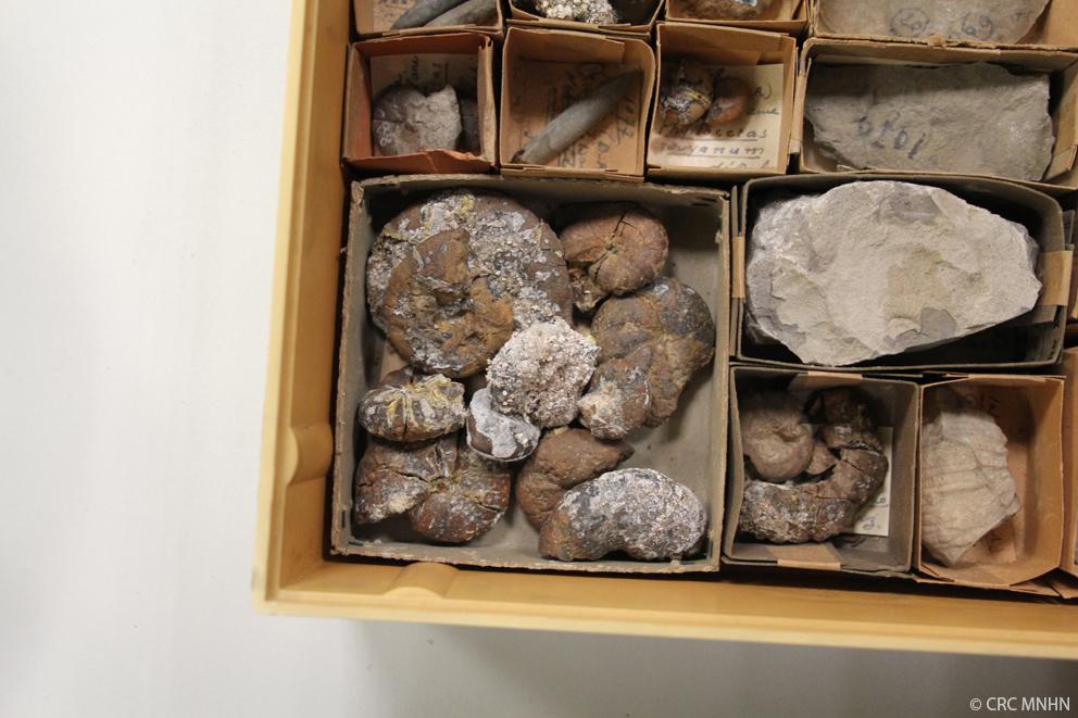 """Visit of the """"Centre de Recherche pour la Conservation des Collections"""""""